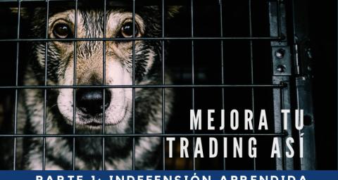 Mejora tu trading así: Parte 1: Indefensión aprendida